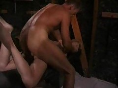 Girl ass fucked in the dungeon tubes