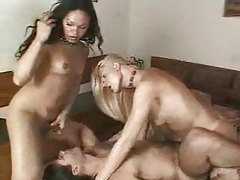 Shemales in bikinis double team the guy tubes