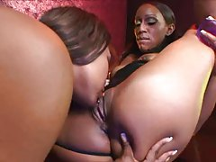 Black lesbian strippers have strapon sex tubes