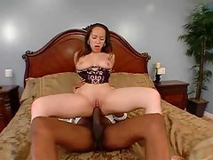 Shaved babe in lingerie loves black cock tubes