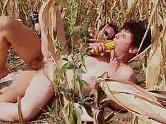 Fucking mature in a field of corn tubes