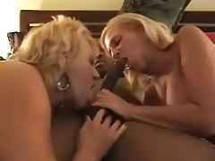 Black guy plows mature blonde sluts tubes