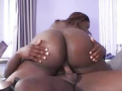 Fat black girl BJ and hardcore slamming tubes