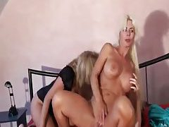 Milfs have the young guy fuck them hard tubes