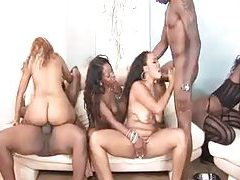 An all black orgy with all holes fucked tubes
