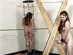 Bound girl in a collar is abused hard tubes