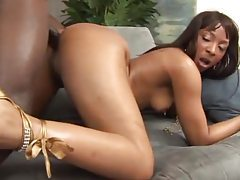 Horny tattooed black chick with pierced nips fucked tubes