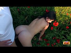 Fucking teen in a field of red flowers tubes