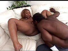 Black BBW eaten out by a black man tubes