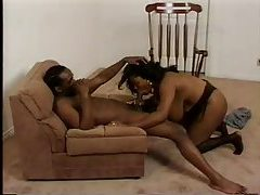 A fat black girl sucking a fat black cock tubes