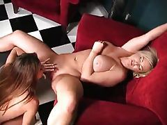 Marvelous pussy eating lesbians at work tubes