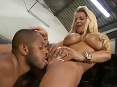Brazilian fucked in the back of a car tubes