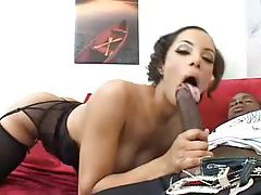 Girl sucks a wicked big black cock tubes