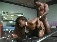 Black pet on collar and leash fucked by BBC tubes