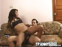 Leggy Latina tranny spreads wide for ass fucking tubes