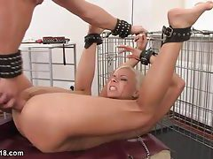 Face and ass fucked blonde in a collar and leash tubes