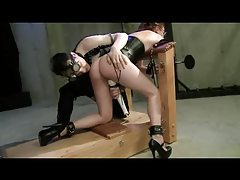 Whipped and Toyed On Her Knees tubes