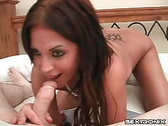 Tramp stamp on a cocksucking brunette on her knees tubes