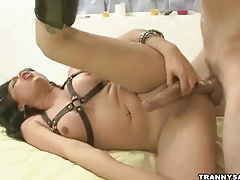 Tasty brunette tranny babe getting fucked anally tubes