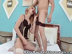Hot shemale gets doggy pounded tubes