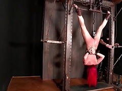 Upside down bound girl with dildo machine fucking her tubes