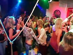 Leather girls on the bar dancing sensually tubes