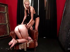 Mistress plays with the ass of a submissive tubes