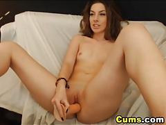 Cutie brunette strips and masturbates tubes