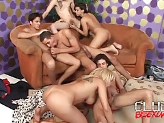 All kinds of cocksucking in hot orgy tubes