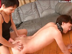 Strapon cock up the asshole of leashed guy tubes