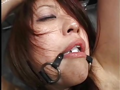 Cute japanese girl oiled up and lightly abused tubes