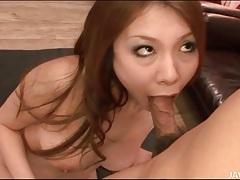 Japanese beauty gives really hot titjob tubes
