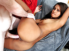 Perky latina babe stacie getting reamed tubes
