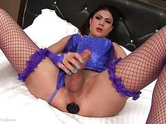 Nice titted ladyboy anita anal drill tubes