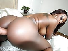 Sexy black ass tubes
