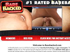 Studs Bareback Creampies tubes