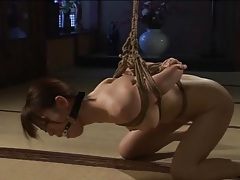 Ass of bound japanese girl flogged lustily tubes