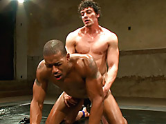 Muscular guys fucking hard tubes