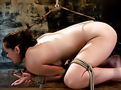 Toy fucking the bondage slut tubes