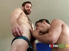 Bearded bear gets a big cock blowjob tubes