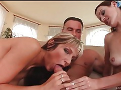 Cute young sluts slobber lustily on his cock tubes