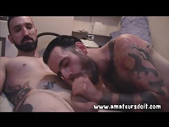 Bearded amateur guys in gay blowjob video tubes