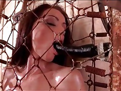 Sophie lynx naked and oiled in a cage tubes