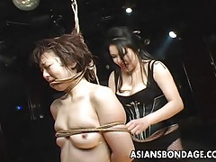 Elegant japanese cutie teased by her horny domme tubes