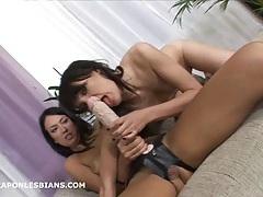 European lesbians huge strapon dildo anal stretching tubes
