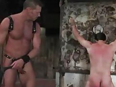 Gay boy in bondage is whipped and beaten tubes