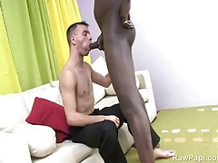 He sucks black cock to erection so it can fuck him tubes