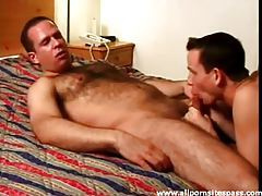 Hot bear blown and sucking on rod in hotel tubes