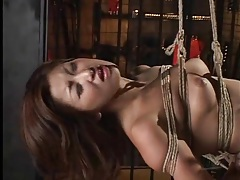 Japanese girl hangs there in rope bondage tubes