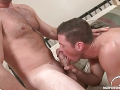 Hairy chest guy with a thick cock gets a bj tubes